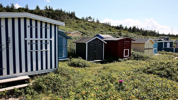Travel; Denmark; Danmark; Tisvildeleje;