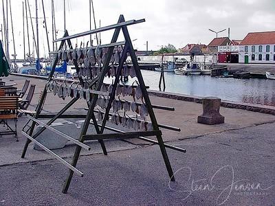Travel; Denmark; Danmark; Sæby;