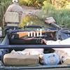 Jeep on Safari