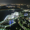 Aerial view of Gardens By The Bay in Sinagpore at night
