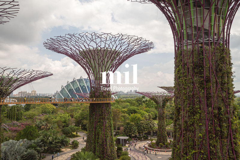 Outside gardens by the bay in Singapore