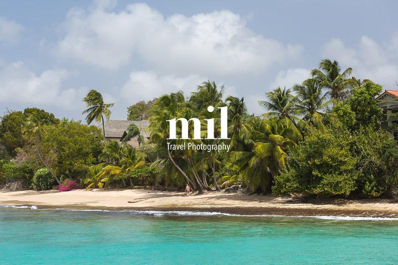 The coastline and beach of Barbados