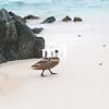 Lesser Bahama Pintail Duck on Sapphire Beach