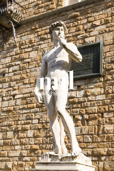 Replica of Michelangelo's David Statue in Florence