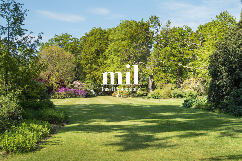 English Country Garden in the Summer