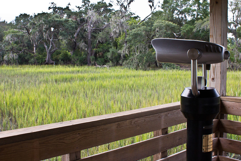 Birdwatching platform and viewing binoculars, Coastal Discovery Museum at Honey Horn, Hilton Head Island, South Carolina, USA, North America.