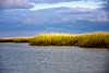 Salt marsh grasses, stormy sky, Hilton Head Island, South Carolina, USA, North America.