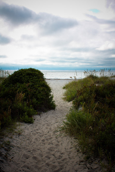 Dune grasses and beach path, Hilton Head Island beach, South Carolina, USA, North America.