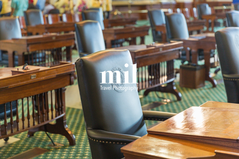 The State of Texas Leather Chair