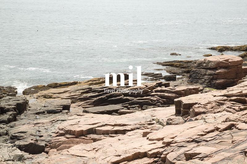 View towards Newport Cove in Acadia National Park