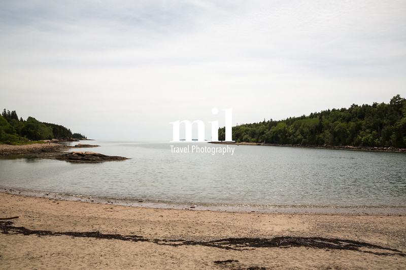 Otter Cove in Acadia National Park