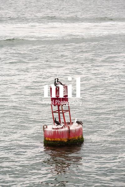 Boston Harbor in MA USA