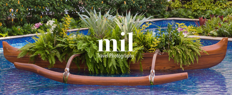 Hawaiian Outrigger as a planter