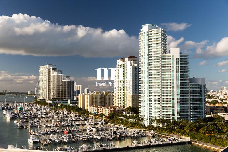 Marina and Condos in Miami