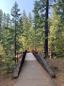 Bridge across Rogue river
