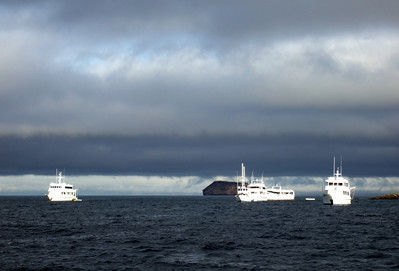 """Typical garúa weather – this is wintertime in the Galápagos, when southeast trade winds bring the cold Humboldt current to the islands. As warm tropical air encounters cooler waters, a marine inversion layer is created, resulting in """"garúa"""" (mist rain)."""