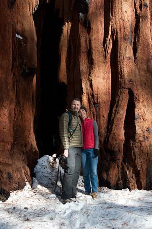 Sequoia National Park, December 2016