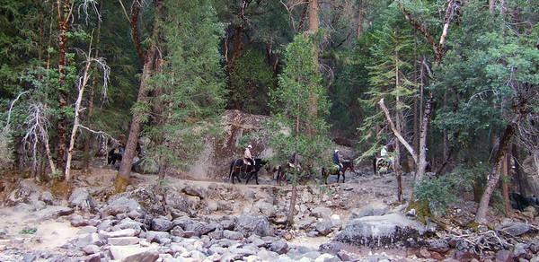 Horseback riders above Tenaya Creek