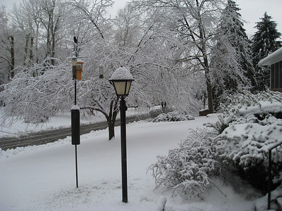 Snow, ice, birds, Leah, Sarah, & Eli