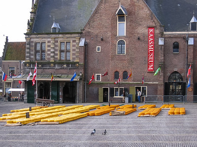 Kaas Markt