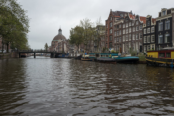 On the Canals with Plastic Whale