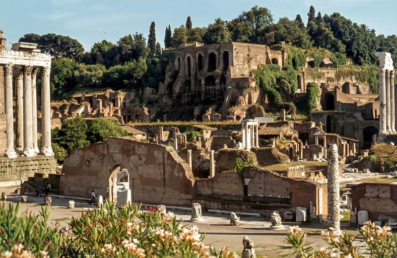 Rome, June 5th