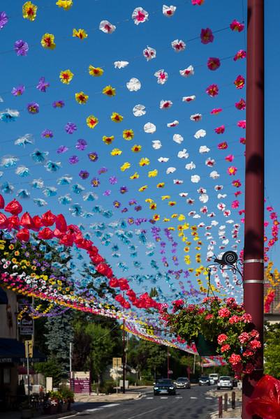 Village Flower Festival