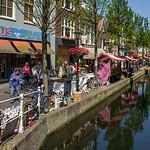 Plexus, Delft