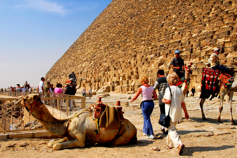 There are plenty of camels for hire here at the east side of Khufu Pyramid.