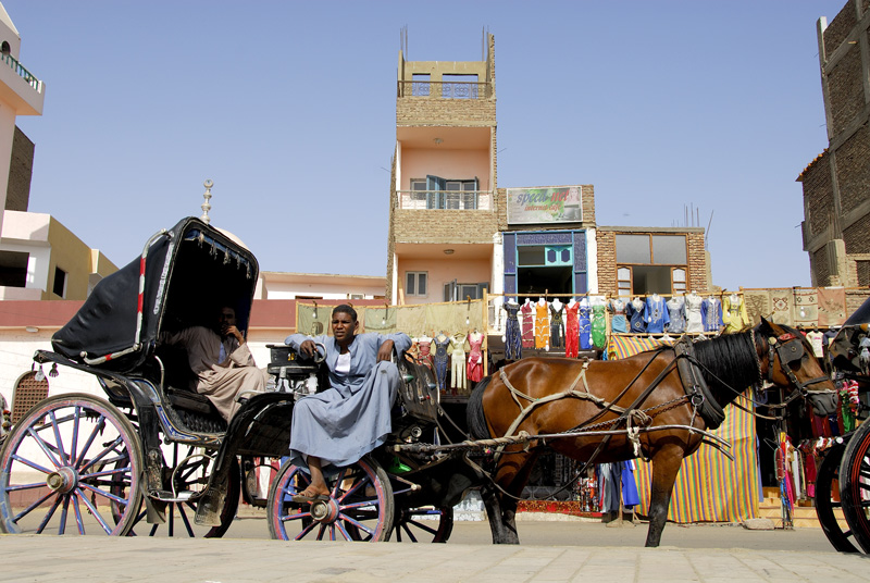 From the cruise ships' dock you may take a horse drawn carriage ride to the Temple of Horus.