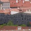 Walenstein Garden drip wall