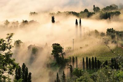 Montalcino Countryside-- Rolling Fog at Sunrise