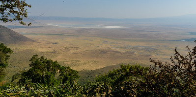073116-Africa Day4 NgoroNgoro Crater-4658