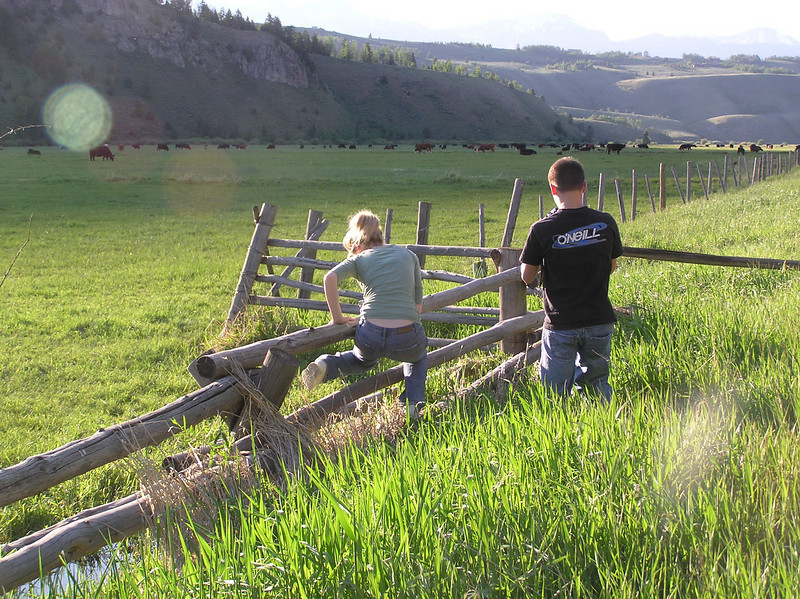 Jackson, Wy. is beautiful and we had to stop as soon as we could by the road just to take photos. Notice Casey trying to hop the fence?