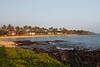 Sheraton Beach (our tree far left) 7151