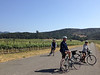 Vineyard ride