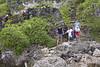 Niue_3417