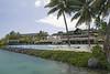 Tahiti_2974