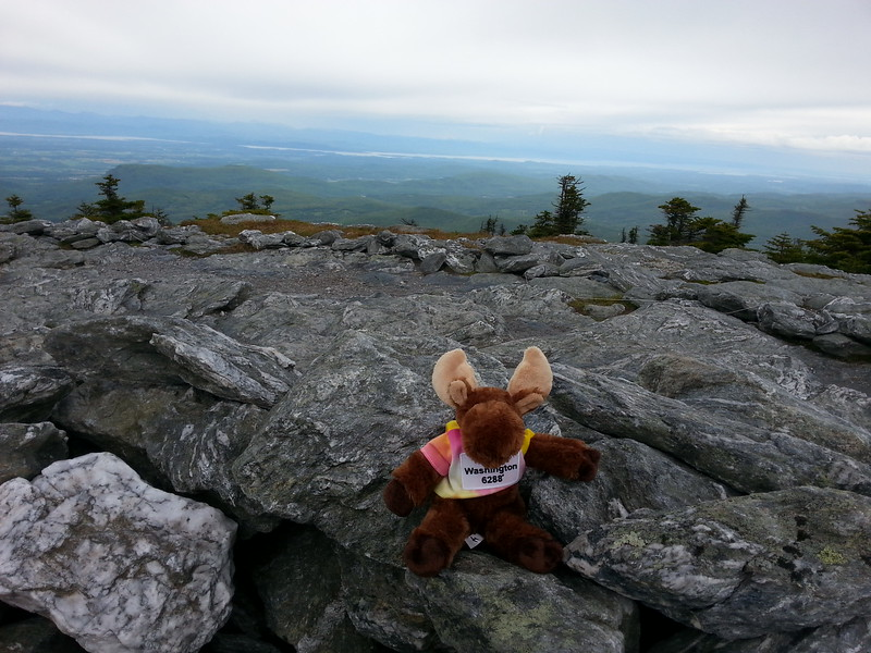 Summit Mt. Abraham