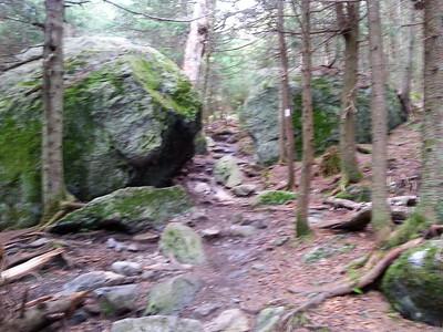 Long Trail Mt Abraham