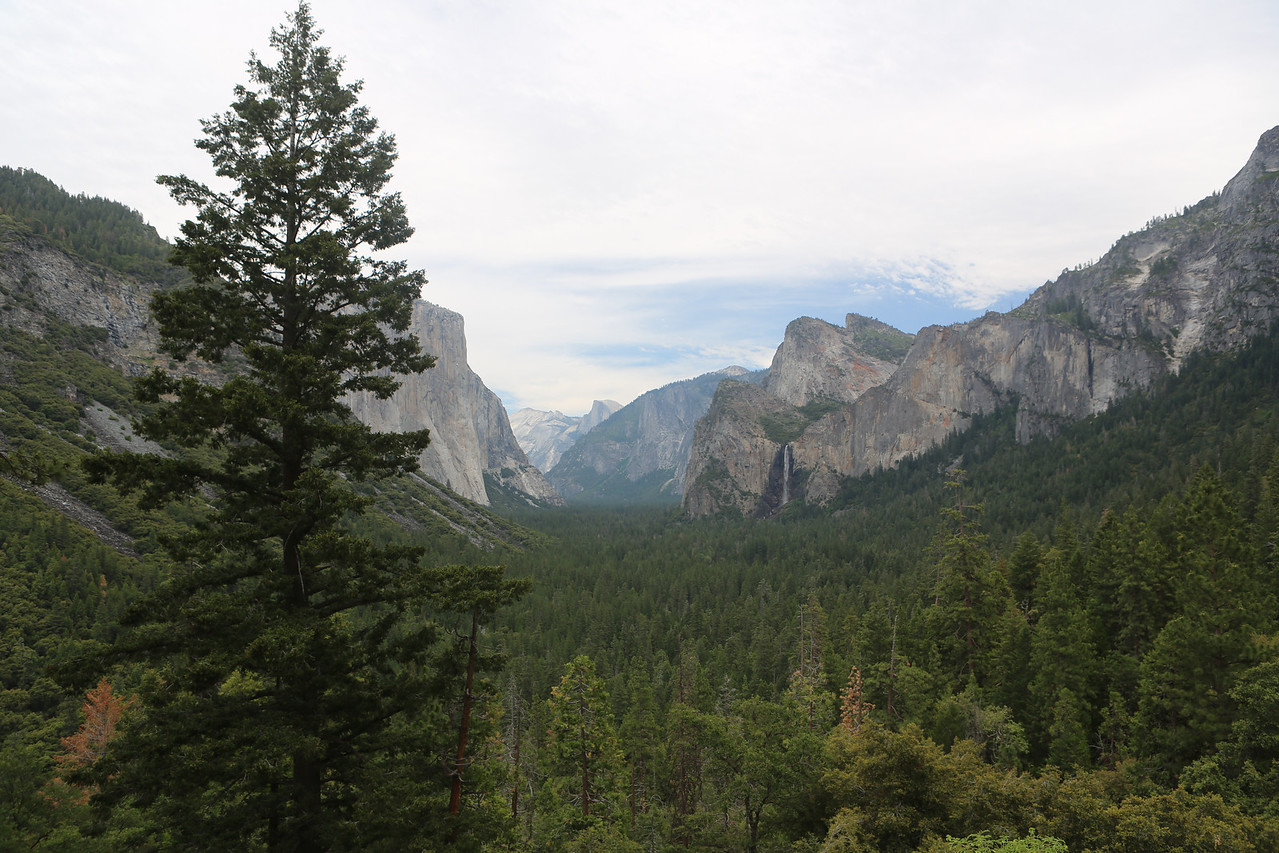 """The famous """"Tunnel View"""".  A spectacular overlook parking area just as you exit a tunnel.  Great view.  You can see a more detailed version of this at <a href=""""http://gigapan.com/gigapans/132734"""">http://gigapan.com/gigapans/132734</a>  Click on the link then go to full screen mode."""