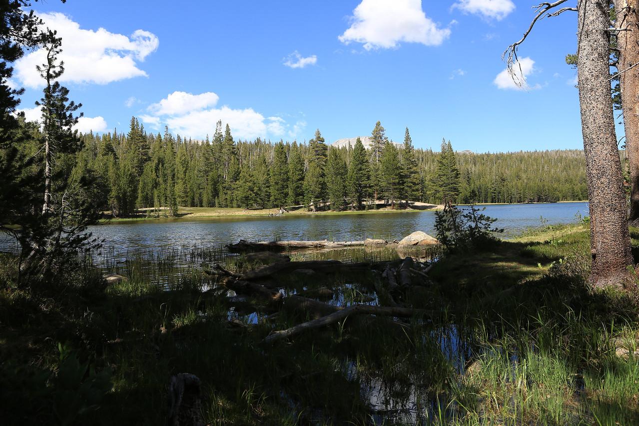 Dog Lake, Tuolumne Meadows