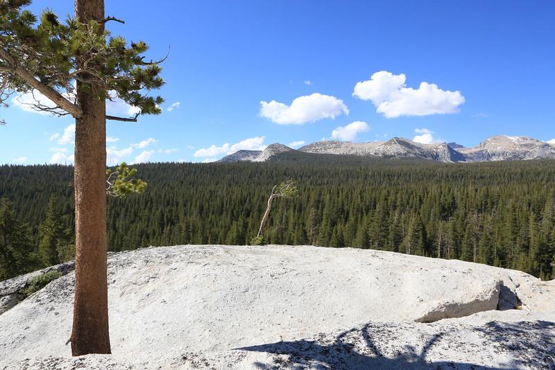 Rock outcrop near Dog Lake.