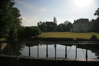 Chateau Foulon has about 100 acres of land.