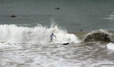 Surfing in the Saint Jean de Luz bay.