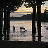 """<span style=""""color:yellow;"""">Libourne : High tides apparently flood this park on a regular basis.  </span>"""