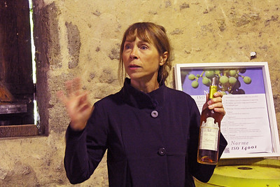 Chateau D'Arche ...our 3rd guide, in the winery and barrel room, explains more about Sauterne.