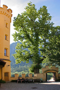 In the courtyard of Hohenschwangau Castle.