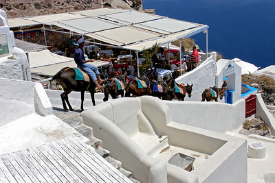 A donkey train moves on down the other path from Oia, this one leading to the very small harbor of Armeni.