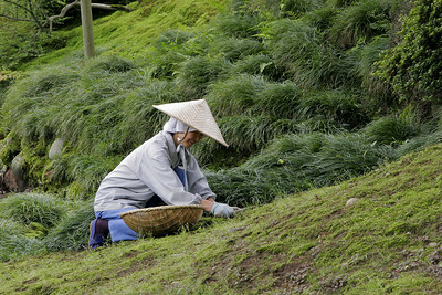 Gardens such as Kenroku-en Garden take a lot of meticulous care.